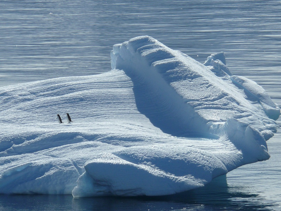 The North Pole Can Soon Be Ice Free In Summers