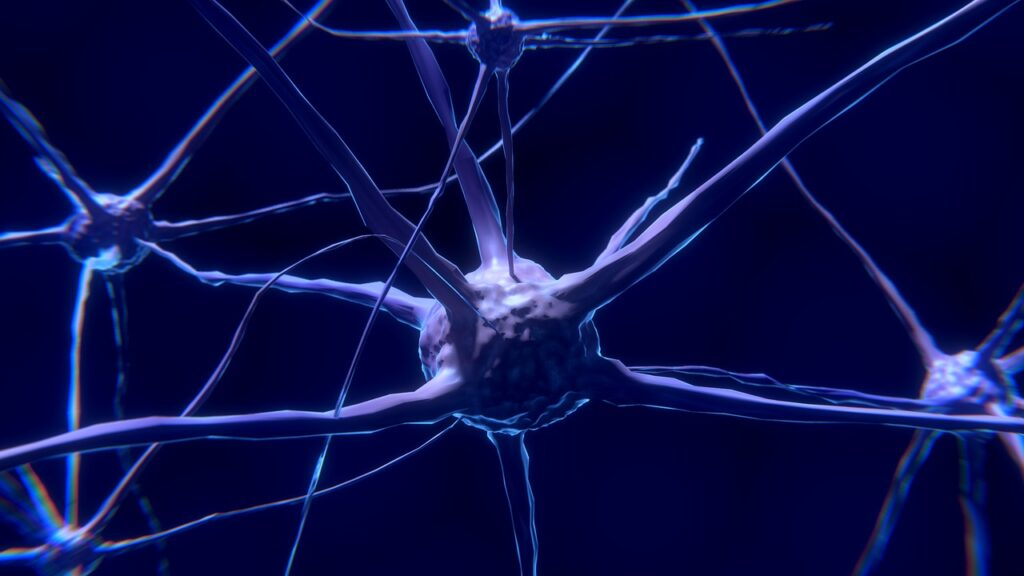 Neurons Regenerated In Mice With Spinal Cord Injury And Optic Nerve Damage