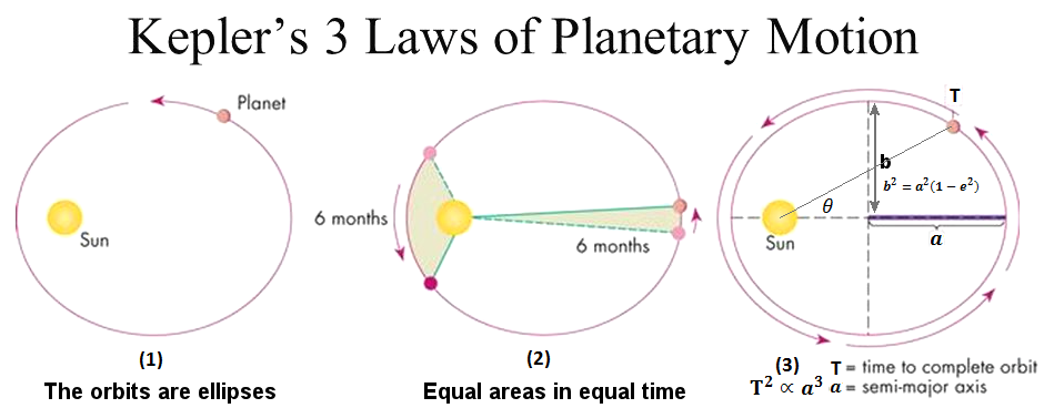 Kepler's laws of planetary motion helped Newton arrive at his formulation of the theory of gravity.