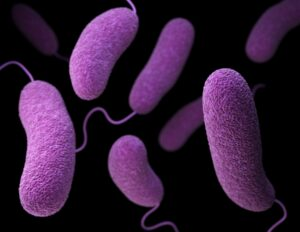 A New Anti-Bacterial Agent Engineered To Treat Drug-Resistant Bacterial Infections