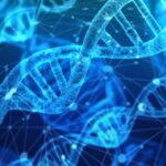 Biochemists Switch DNA On And Off Using Light