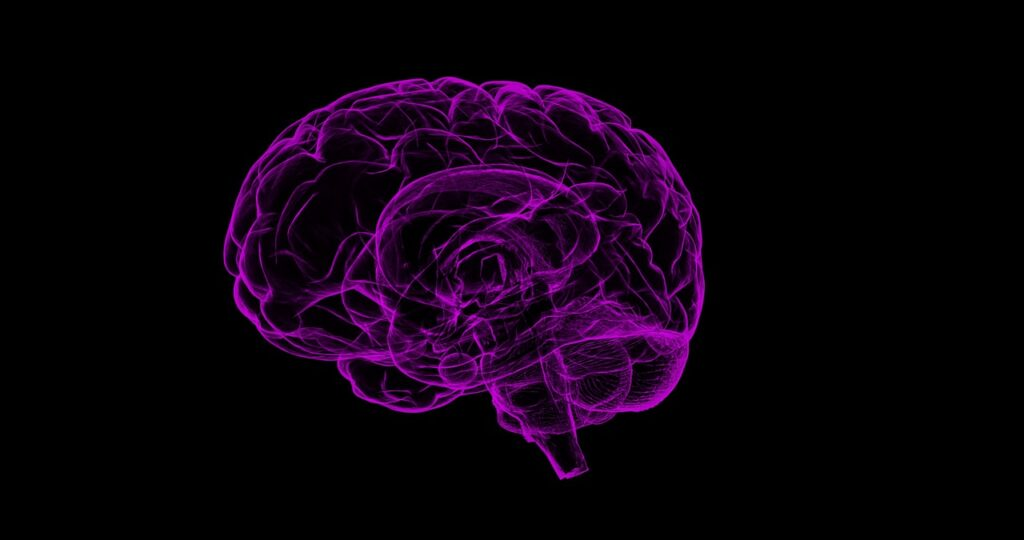 Researchers Develop New Nanoparticle Drug-Delivery System To Treat Brain Disorders